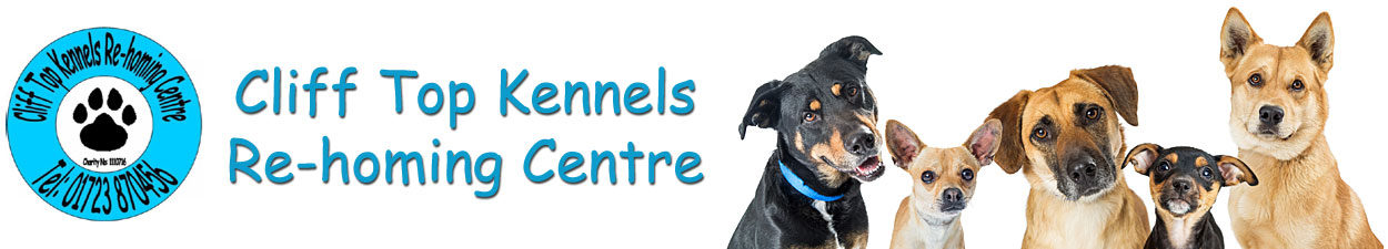 Cliff Top Kennels Re-homing Centre